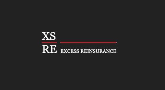 ExcessReinsurance-card