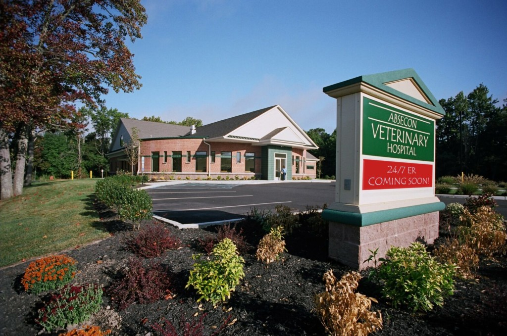 Absecon-Veterinary-Hospital-Backbround2